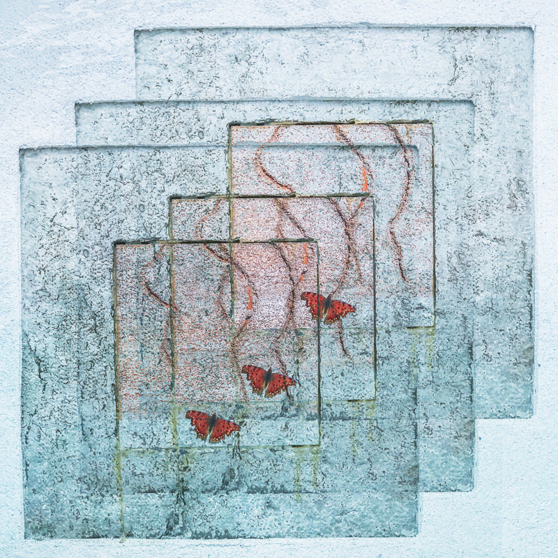 Abstract, multiple exposure image, window detail, Zattere, Venice
